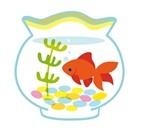 金魚イラスト1