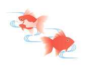 金魚イラスト4